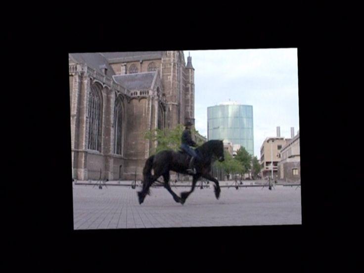 Equestrian (monitorversie)