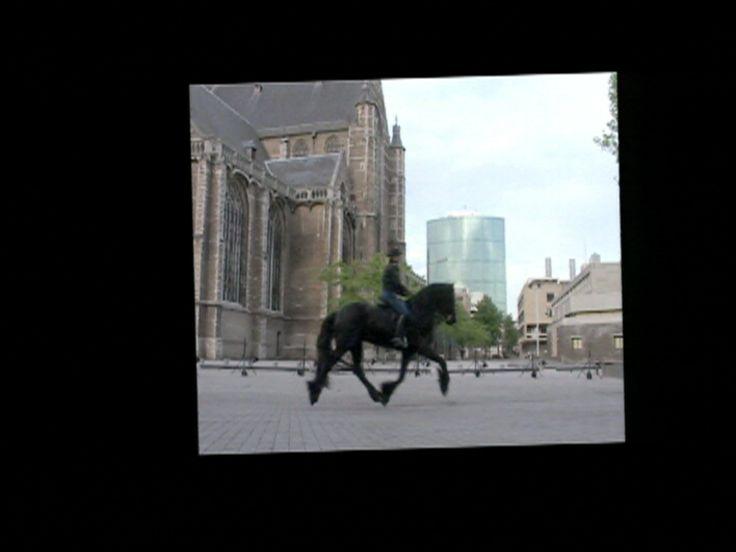 5AM Equestrian (installatieversie)