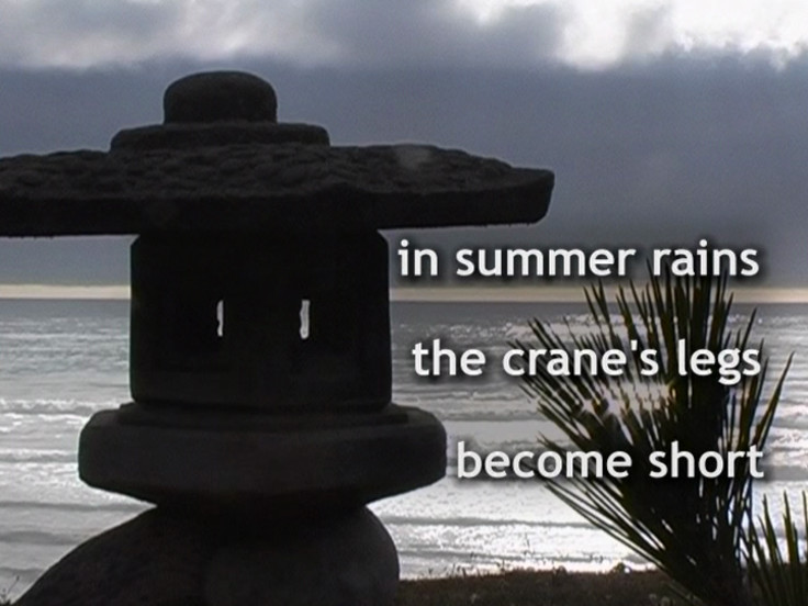 Haiku - the art of the present moment (single channelversie)